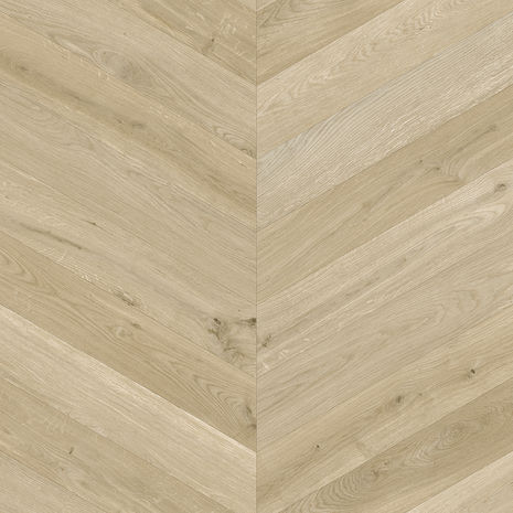 Evergreen Oak 116L