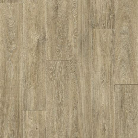 Havanna Oak 699L